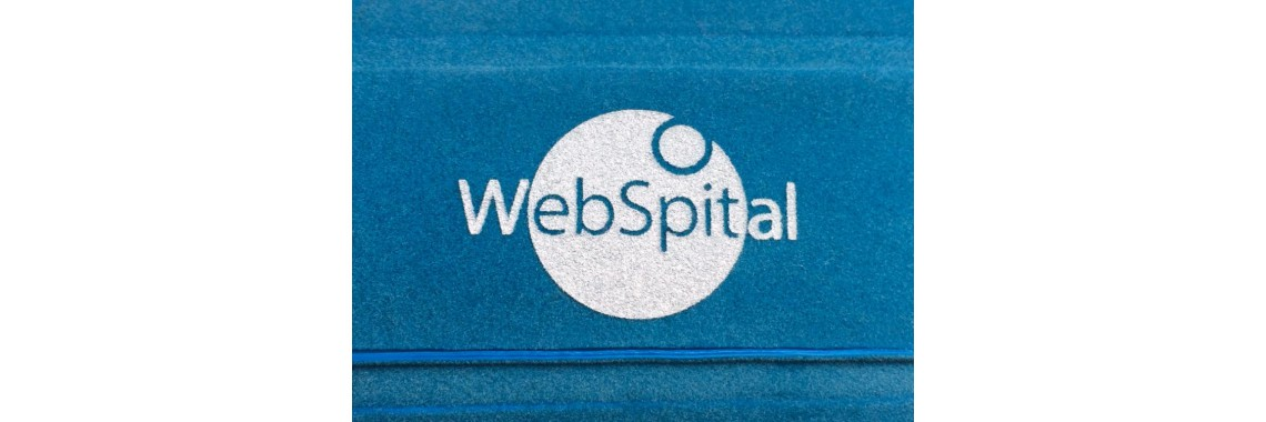 "Logo ""WebSpital"""